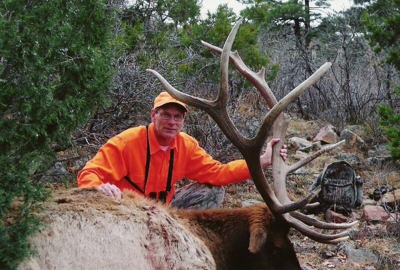 Steve's elk /Rose Ranch