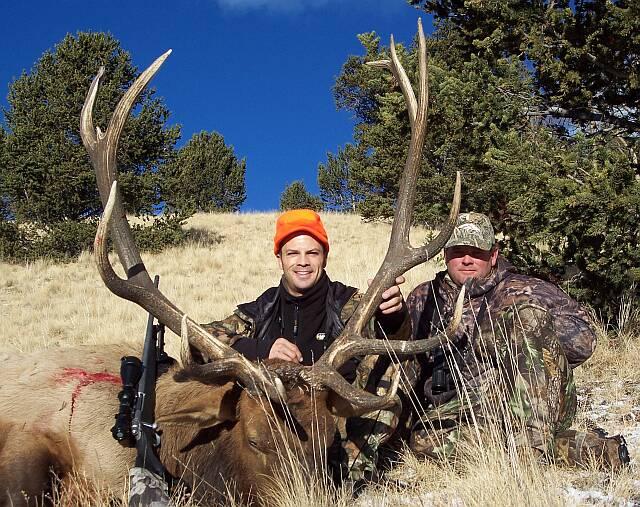 Elk 2004
