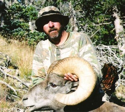 Big Horn Sheep 2004