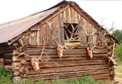 Bulls  Mountain Meadows Ranch
