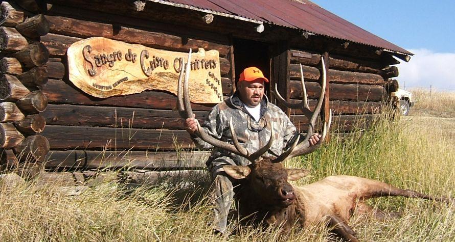 Freddy's bull 2007