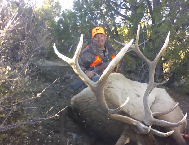 Lloyd's elk 07